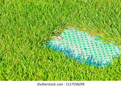 Detail of a green mowed lawn with plastic box for irrigation control valve