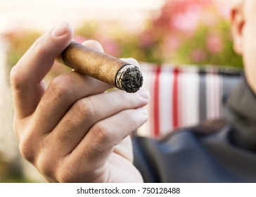 Detail of the hand of a smoking man holding a burning cigar in a garden with a blurred background