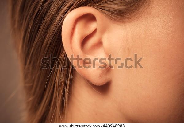 女性の耳と髪の接写を持つ頭の細部