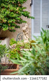detail of home garden in San Tropez, Cote d'azur , France