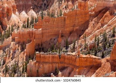 Detail of the Hoodoo rock spires of Bryce Canyon, Utah, USA.