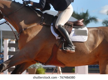 Detail of a horse and rider competing in a show jumping event in an arena on a sunny day. The rider is wearing a jacket and breeches. The horse is bay colored