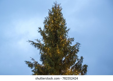 Detail of a large illuminated Christmas tree and placed in the square in the middle of a large European city.