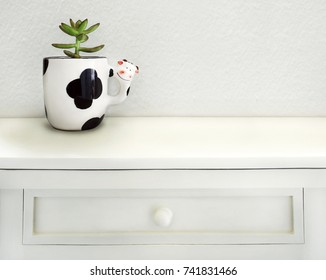 Detail of a little  succulent plant in a funny shape cow cup