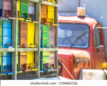 Detail Mobile beehive on lorry with colourful panels on sunny day