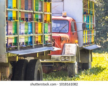 Detail Mobile beehive on trucks with colourful panels on sunny day