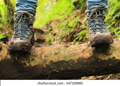 Detail of muddy boots in the way to the Lost three waterfalls hike in the highlands close to boquete, Panama.