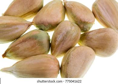 Detail of multiple bunya pine seeds