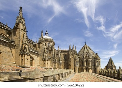 Detail of the Old Cathedral of Salamanca, Spain, picture taken on the roof
