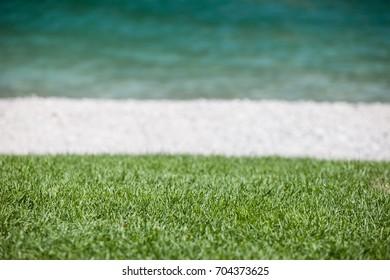 Detail on the grass of an alpine beach.