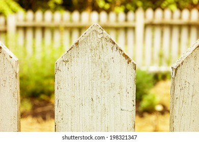 Detail of a painted white picket fence./Picket Fence