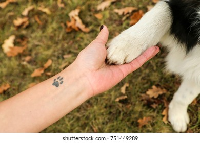 A detail picture of holding hand and dog´s paw. It is a symbol of partnership and trust between the owner and his pet.