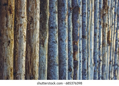 Detail of a pile of aligned dry tree trunks. Stacked firewood pattern. Timber industry. Nature background.