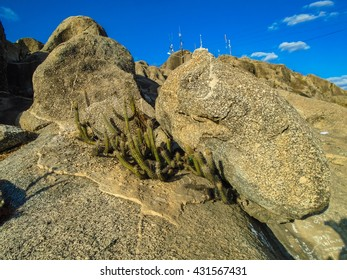 Detail of Quixada rock formations in Brazil