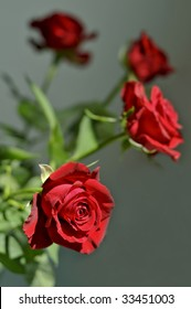 Detail of the Red Roses Bouquet