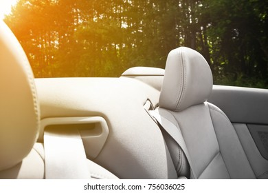 Detail of retractable seat belt on a cabriolet or sports car with gray leather upholstery in a close up view with a background of leafy trees outside the car with the sun glow in the left corner