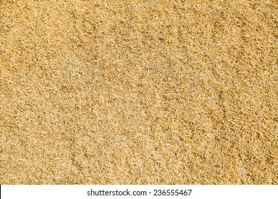 Detail of rice husks texture