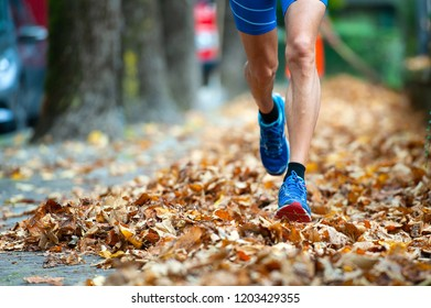 Detail of runner shoes among the leaves.