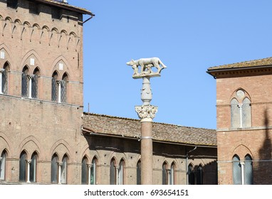 Detail of Salimbeni palace and Lupa Senese sculpture on Duomo square at Siena in Italy