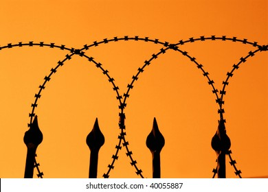 detail shot from a barbed wire fence with orange sky