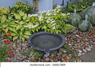 A detail of a small courtyard garden with water features