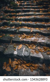 Detail of stone stairway with foliage and fallen leaves in a park