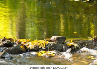 Detail of stones in the creek in the autumn season