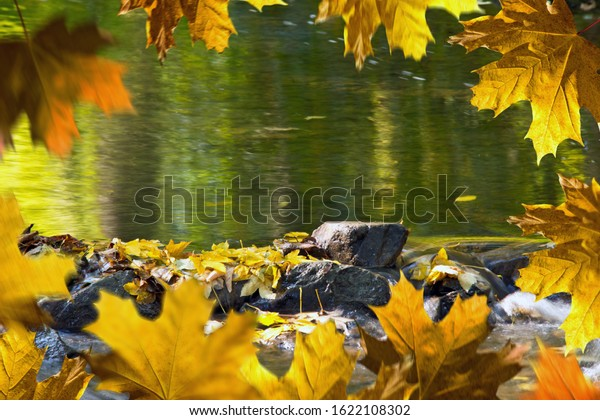 Detail of stones in the creek in the autumn season. Autumn frame.