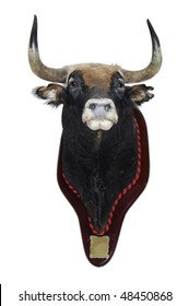detail of a stuffed head of a bull isolated on a white background