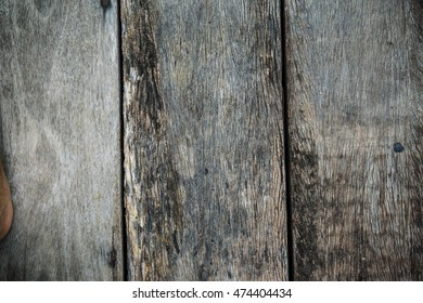 Detail texture of old bark wood use as natural background