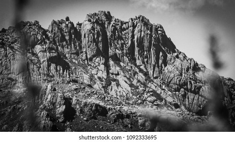Detail of the texture of the rock mountain called Agulhas Negras, photographed in black and white and framed by the region's nature in blur.