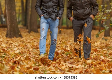 Detail of two friend in black jackets walk in autumn woods, front view
