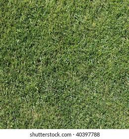 Detail view of a fresh cut Grass Field