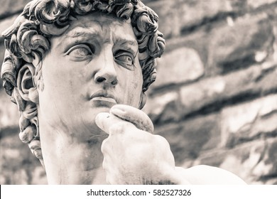 Detail view of Michelangelo's David Head, Italian Statue.