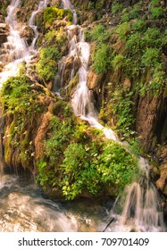 Detail of a waterfall in a forest.