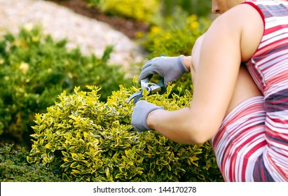 detail of woman hand gardening with rubber gloves
