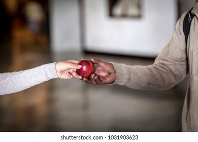 Detail of woman hand giving a red apple to a homeless.