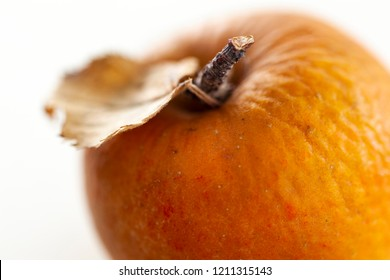 Detail of a wrinkled apple in autumn
