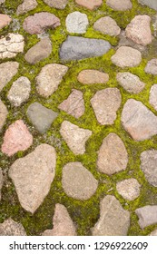 detailed background of ancient mossy stone pavement
