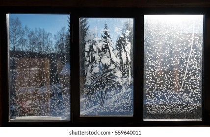 Detailed background with window ice flowers.