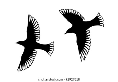 Detailed bird silhouettes. Looks lie angels with transparent wings.