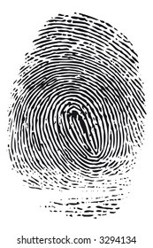 Detailed black fingerprint isolated on white background.