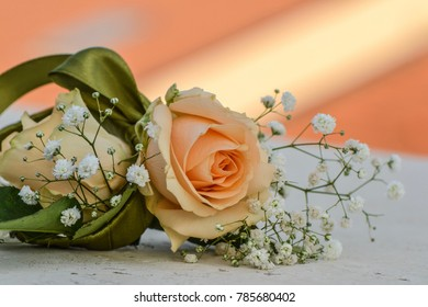 Detailed close up of a beautiful peach rose and gypsophilia contrasted with green ribbon.