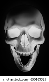 Detailed graphic full face white human skull with open mouth on black background