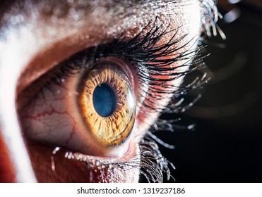 detailed hazel eye macro