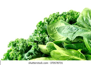 Detailed macro of curly-leafed kale and spinach leaves with white copyspace