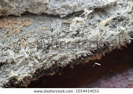 Asbestos Fibers In Lungs : Asbestos exposure and breast cancer breast cancer uk