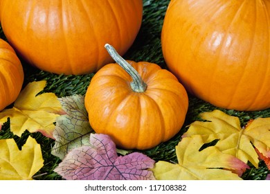 Detailed view of halloween pumpkins with autumns leaves.
