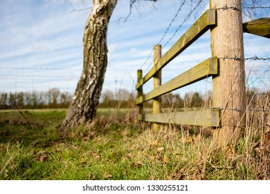 Detailed view of a newly installed timber built fence and barbed wire seen at the entrance to a farm field. An out of focus small tree, leading to the field is seen on the left.