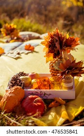 details and elements of autumn decoration outdoors